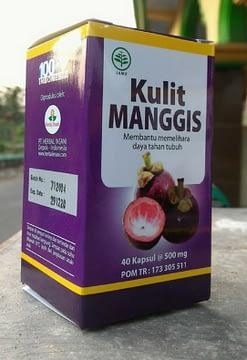 Agen Kapsul Kulit Manggis Herbal Insani Surabaya Sidoarjo