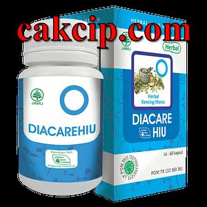 AGEN herbal diabetes diacarehiu surabaya Sidoarjo