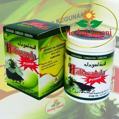 Agen Habbatussuda Prima Herbal Insani Surabaya Sidoarjo