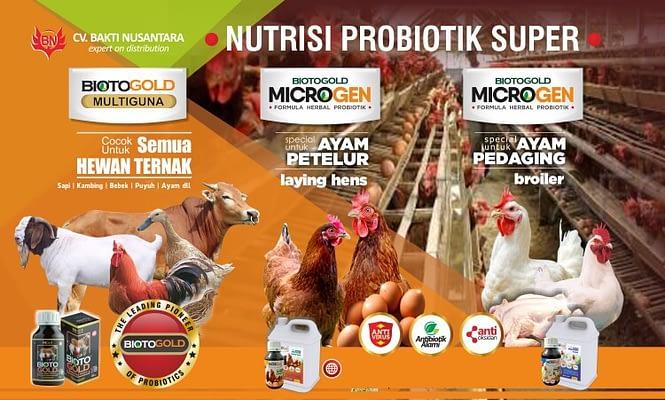 Biotogold nutrisi ternak probiotik
