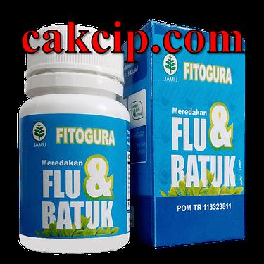 fitogura flu batuk Malang Mojokerto