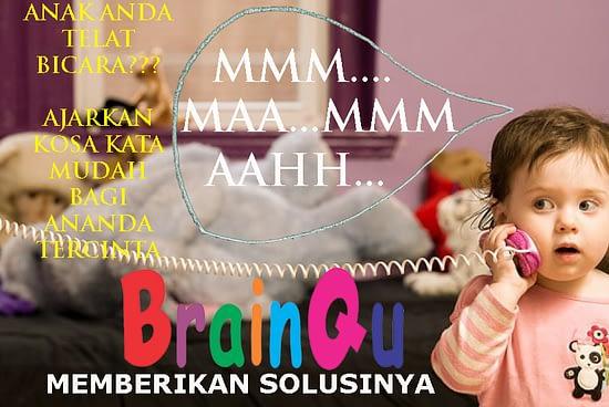Agen Distributor Brainqu Herbal Nutrisi Otak Surabaya