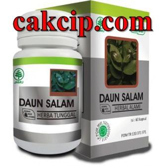 herbal daun salam surabaya
