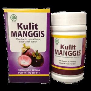 Jual Kapsul Kulit Manggis Herbal Insani Surabaya Sidoarjo