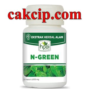 Jual Obat Klorofil N-Green HPAI Asli Jakarta Bandung Yogyakarta
