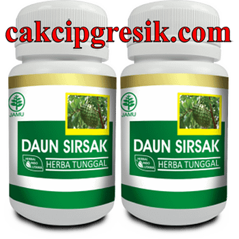 Distributor KAPSUL DAUN SIRSAK HIU ASLI Surabaya Sidoarjo