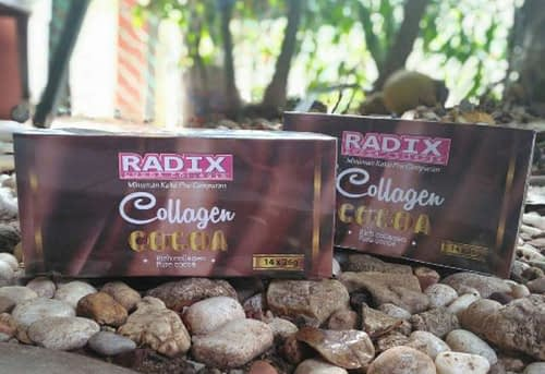 Stokis radix cocoa collagen surabaya sidoarjo