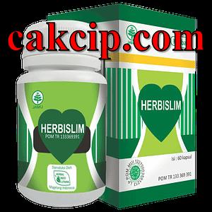 Agen Kapsul agen herbislim herbal diet surabaya