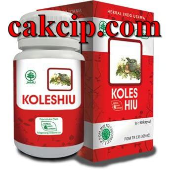 Distributor herbal kolestrol koleshiu Surabaya Malang