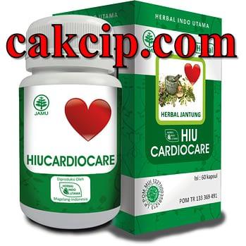 Agen hiucardiocare untuk jantung Malang Pasuruan