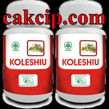 Agen herbal kolesterol koleshiu surabaya