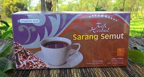 Jual teh herbal sarang semut murah surabaya sidoarjo