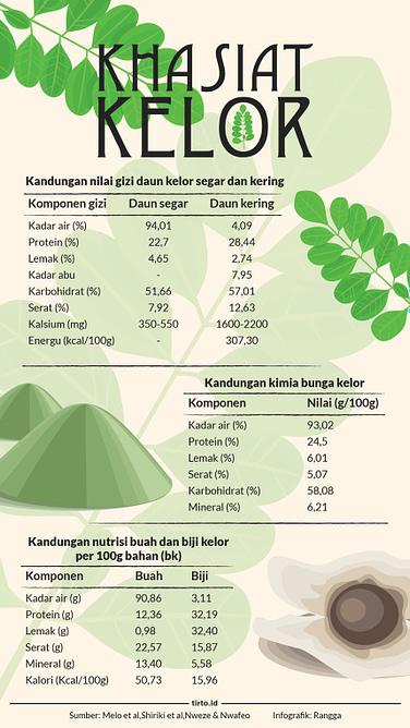 Grosir Kapsul Daun Kelor Tazakka Surabaya