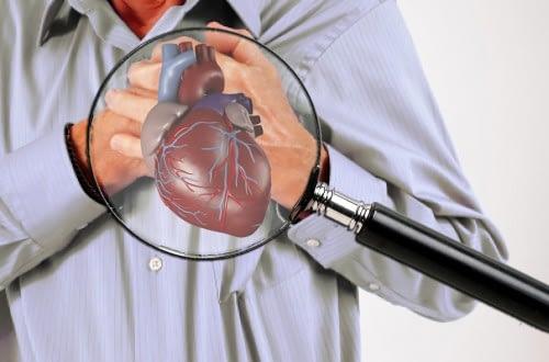 Distributor Obat Herbal Jantung Koroner Pentingnya diagnosis penyakit jantung