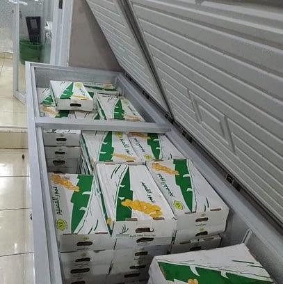 Distributor Kurma Sukari Sukkari Surabaya Sidoarjo Gresik Mojokerto