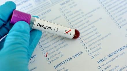 Cara Alami Mengobati Demam Berdarah Test Dengue