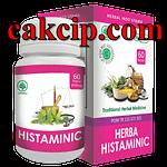 agen herba histaminic surabaya Sidoarjo