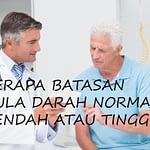 Gula Darah Normal, Rendah Atau Tinggi?