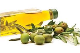 Olive Oil Jual Day Cream HNI Surabaya Sidoarjo Mojokerto