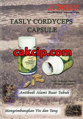 tasly cordyseps herbal surabaya